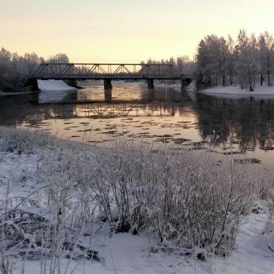 Kiiminkijoki joulukuun puolivälissä.