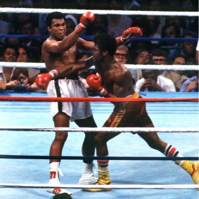 Muhammad Ali i vita shorts boxas mot Leon Spinks i rödgula shorts