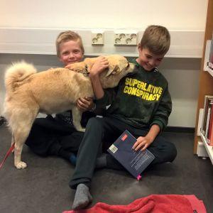 Hunden Hilma, Samuel Fors och Pontus Engdal.