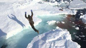 En säljägare hoppar från ett isflak till ett annat.