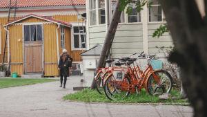 Orangefärgade cyklar parkerade intill trähus.