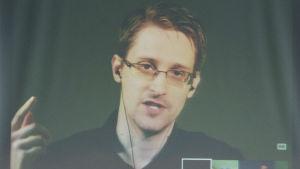 Edward Snowden deltar i en videosänd presskonferens i Europarådets byggnad i Strasbourg den 23 juni 2015.