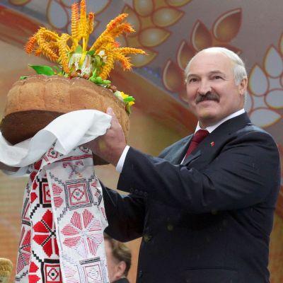 President Alexandr Lukasjenko tar emot bröd och salt på en skördefestival.