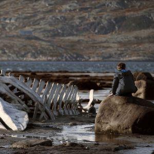 Valaan luuranko ja mies rannalla elokuvassa Leviathan