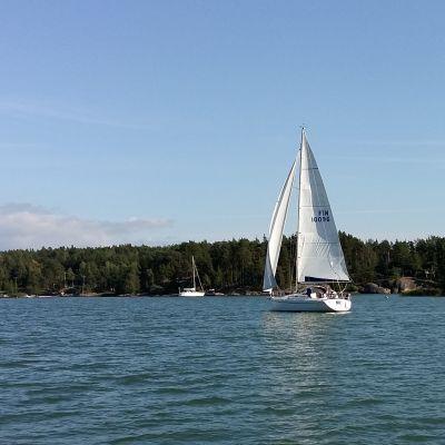 En segelbåt med vita segel seglar i medvind.