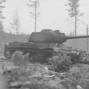 Stridsvagn i Summa på Karelska näset den 17 juni 1944.