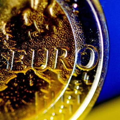 Lähikuva eurokolikosta.