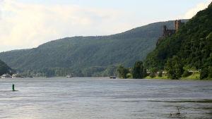 Rhenstein Burg