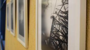 Ett foto på vass och en elstolpe taget med nålhålskamera.