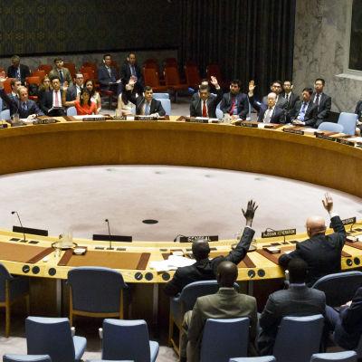 FN:s säkerhetsråd samlat runt ett bord.