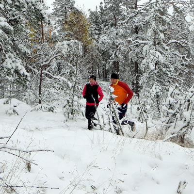 Stiglöpare i vinterskog.