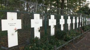 En lång rad med vita kors upphängda på ett rutmönstrat metallstängsel. På korsen är korta texter med dödsdatum o namn.