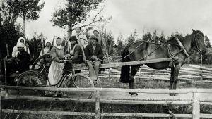 Människor fotograferade under skördetiden i Alahärmä 1915