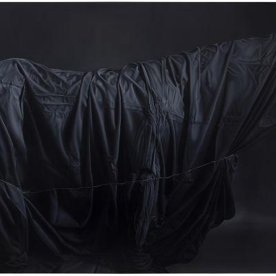 Lähes musta maalaus kankaaseen peitetystä suomenhevosesta.