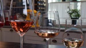 Fyra glas med olika roséviner.