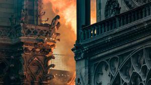 Notre-Dame brinner.