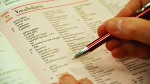 Närbild på en ordlista med ord på italienska och finska