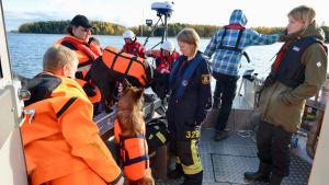 Flera personer och två hundar i en båt. Många har räddningskläder i orange på sig.