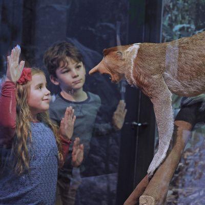 Kaksi lasta katsoo täytettyä apinaa
