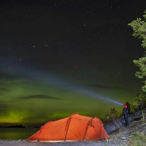 Rött tält intill strand i mörker och norrsken.