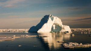 Isberg i sydvästra Grönland, Skovfjord