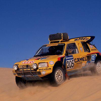 Pariisi–Dakar-ralli 1990, Peugeot 205 T16