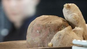 Råvaror i den japanska grillrestaurangen COD i Riga i Lettland