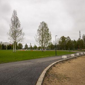 Oulun Kuusisaari