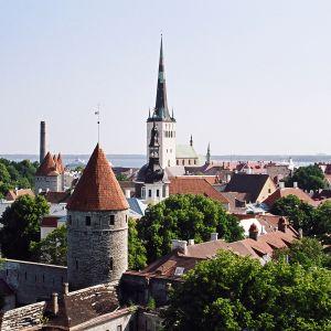 Vy över gamla stan i Tallinn från Domberget (Toompea)