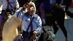 Mies juo olutta pullosta hevosen selässä.
