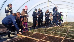 Skolelever med utekläder på inne i ett växthus med små plantor.