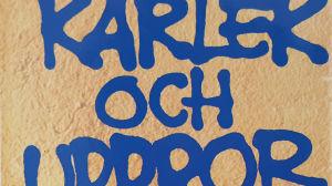 Detalj från pärmbilden till Siv Widerbergs och Anna Arténs antologi med tjugo dikter för unga människor, Kärlek och uppror.
