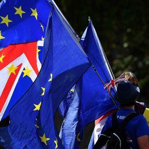 Brexitiä vastaan mieltään osoittavia ihmisiä Lontoon parlamenttitalon ulkopuolella 29. elokuuta 2019.