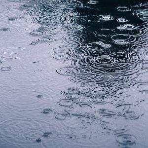 Regndroppar skapar ringar på vattenyta
