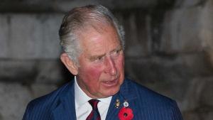 Prins Charles vid firandet av 100-årsdagen av första världskrigets slut.