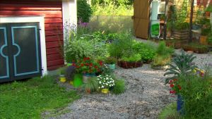 En färgglad entre av krukor och sommarblommor