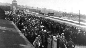Ett fotografi från Auschwitz-Birkenau.