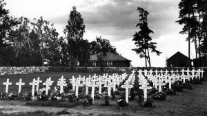 Talvisodassa kaatuneiden sankarihaudat Porvoon hautausmaalla välirauhan aikana.