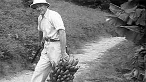 Mies Brasilian Penedossa Filmisepon katsauksessa 1948