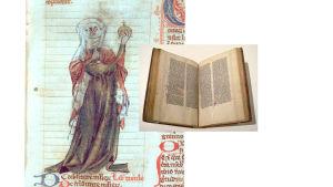 Trota-parantajanaisen uskottiin kirjoittaneen Trotula-teoksen 1100-luvulla Salernossa.