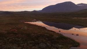 Aurinko laskee tunturimaisemassa Ruotsin Lapissa.