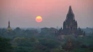 Kvällsol över tempel och djungel