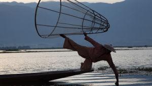 Burmesisk fiskare balanserar i båt