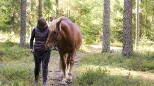 Nainen taluttaa hevosta metsäpolulla