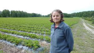 Elisif Vennelä odlar flera olika bär på Bjursängens bärodling i Pargas.