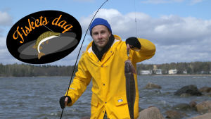 Bild till fiskets dag-juttu.