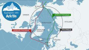 Karta över Arktis