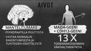 Psykopaatin aivot