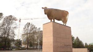 lehmä mannerheimin patsaalla