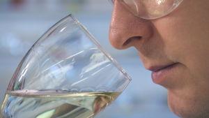 Viiniasiantuntija Ilkka Sirén haistaa viiniä.
